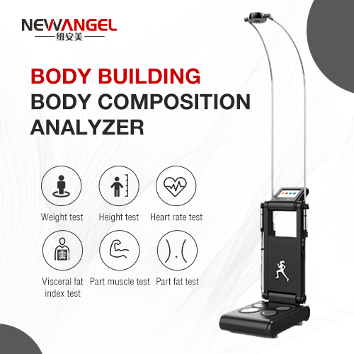 body fat analyzer Height weight bmi water Human Body Composition scale analysis