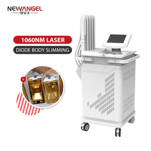 1060nm Diode Laser Machine Best Selling Professional Clinic Use Vertical Fat Reduction Body Slimming Weight Loss